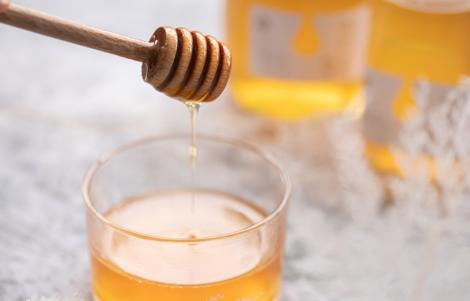 養蜂を学ぶ中で知ったミード酒