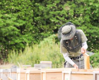 養蜂の組合・協会に所属し常に 情報共有や協力体制を図っています